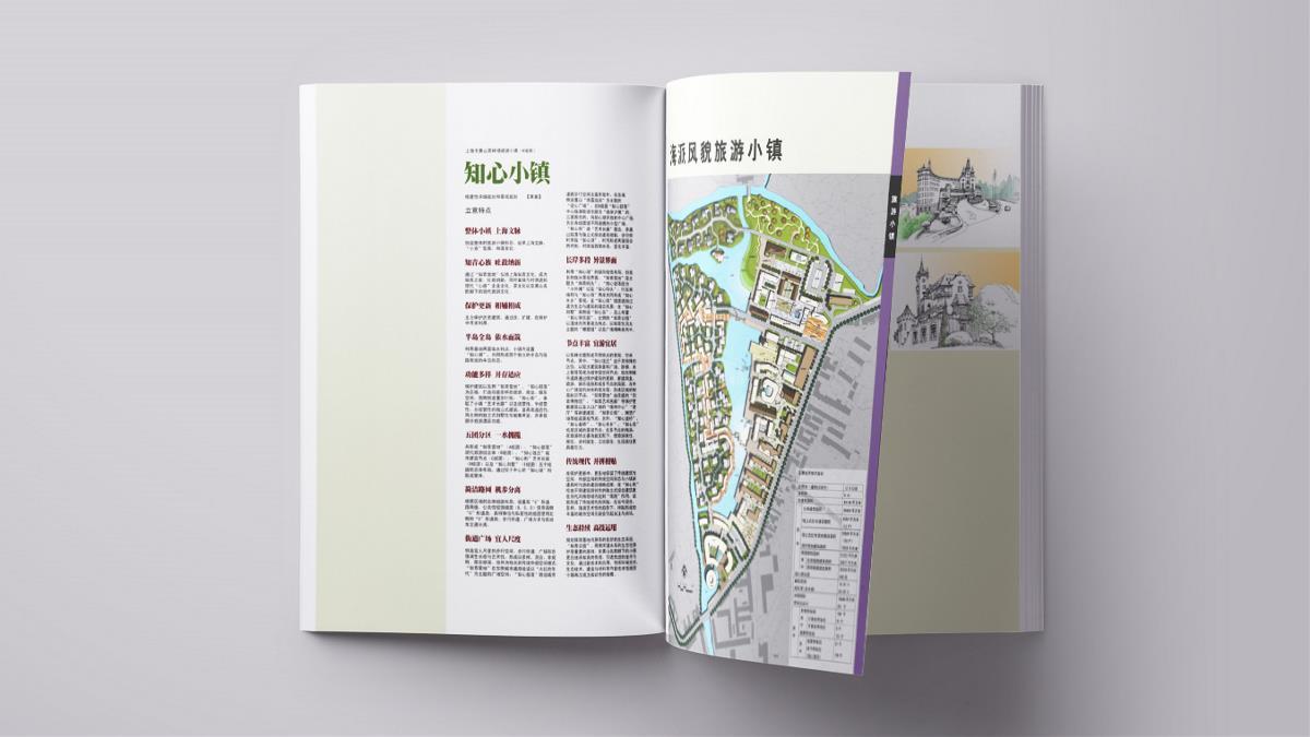 心族-黄山茶林场规划项目品牌视觉设计|摩尼视觉原创