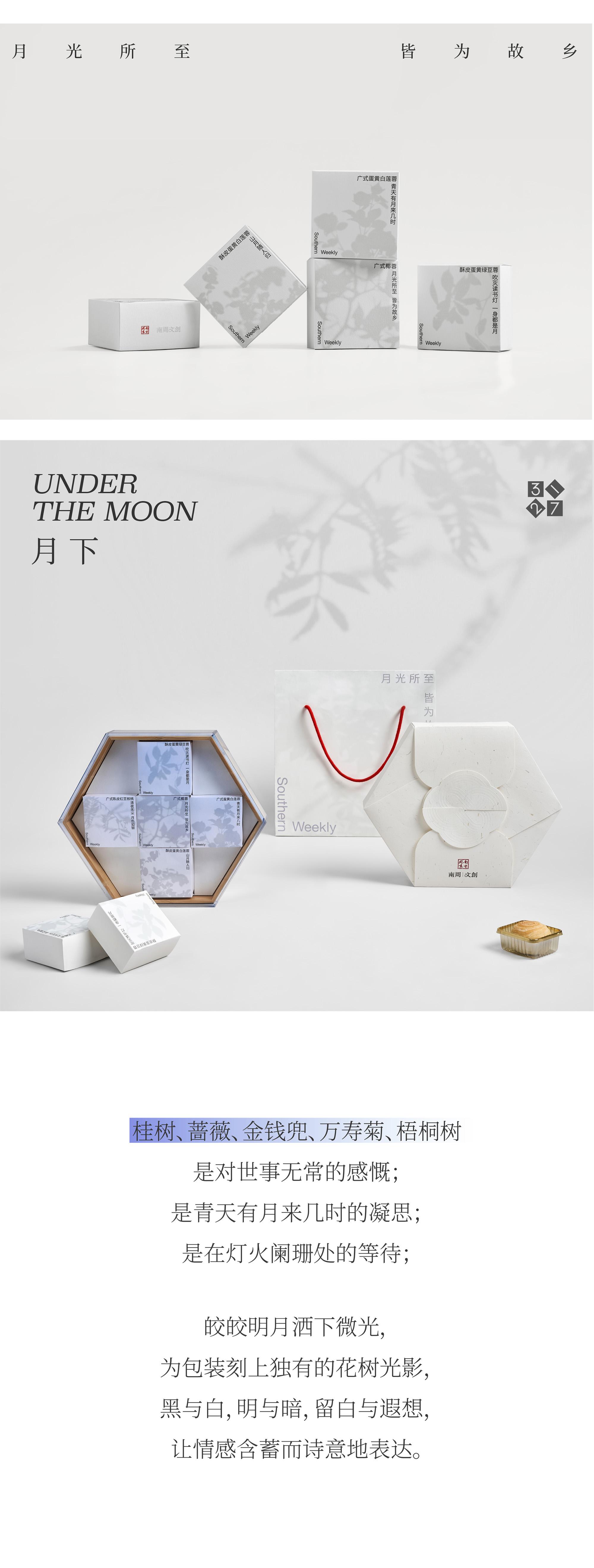 南方周末 × 3721设计   月光所至,皆为故乡